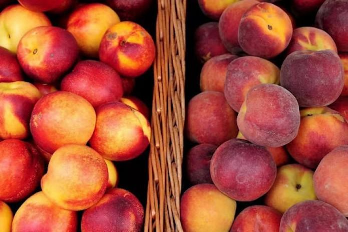 Россельхознадзор выявил «опасный грибок» в узбекских фруктах