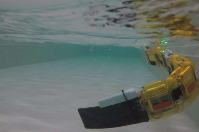 Ученые разработали робота, который поможет найти источник загрязнения в водах