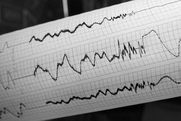 В Ташкенте произошло землетрясение силой 4 балла