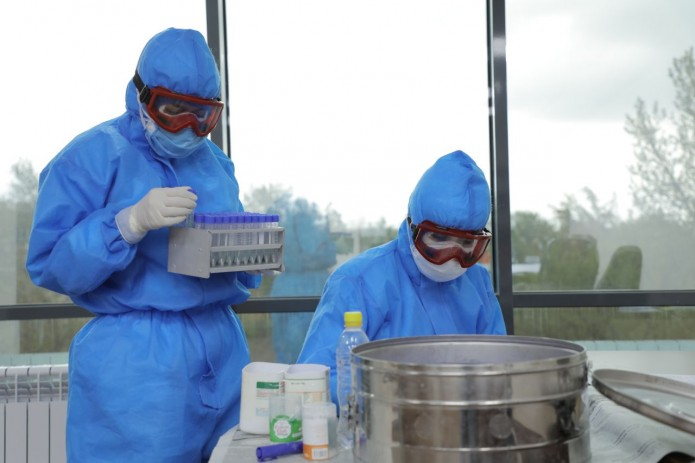 В Узбекистане число случаев заражения коронавирусом достигло 3036