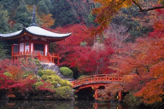 Япония привлекает туристов отсутствием туристов