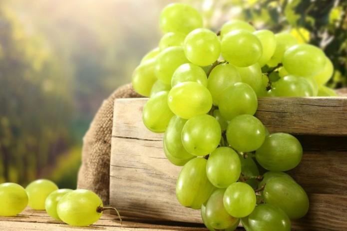 Узбекистан увеличил экспорт винограда на 8,9 тыс. тонн