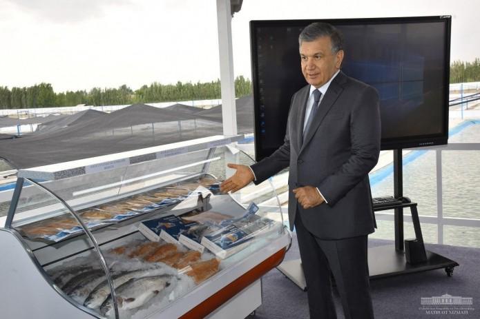 Шавкат Мирзиёев: редкие породы рыб должны быть доступными для населения