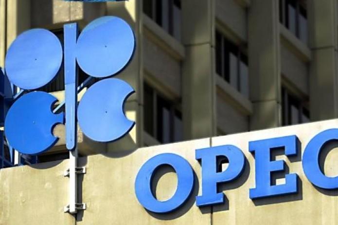 Страны ОПЕК договорились о сокращении добычи на 800 тысяч баррелей в сутки
