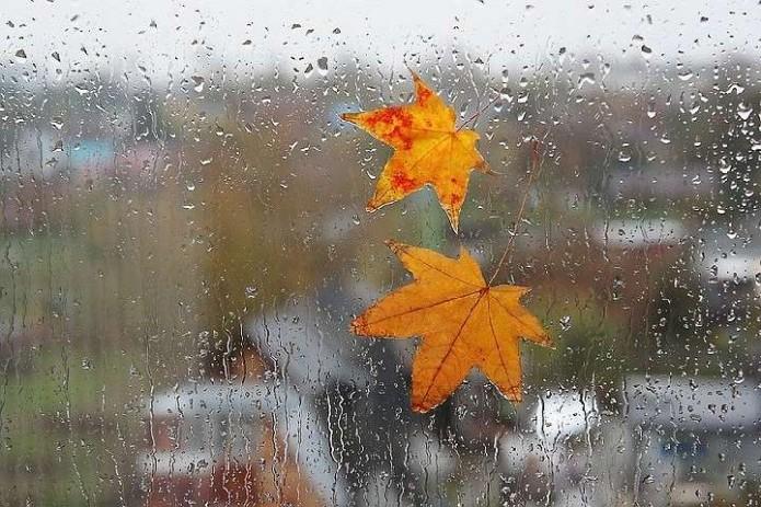 Узгидромет: В конце недели ожидается относительно прохладная погода