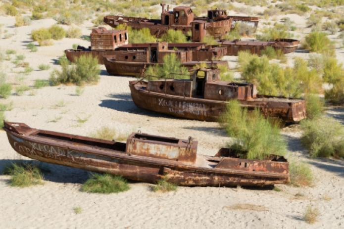 На высохшем дне Аральского моря высадили еще 1,2 млн га леса.