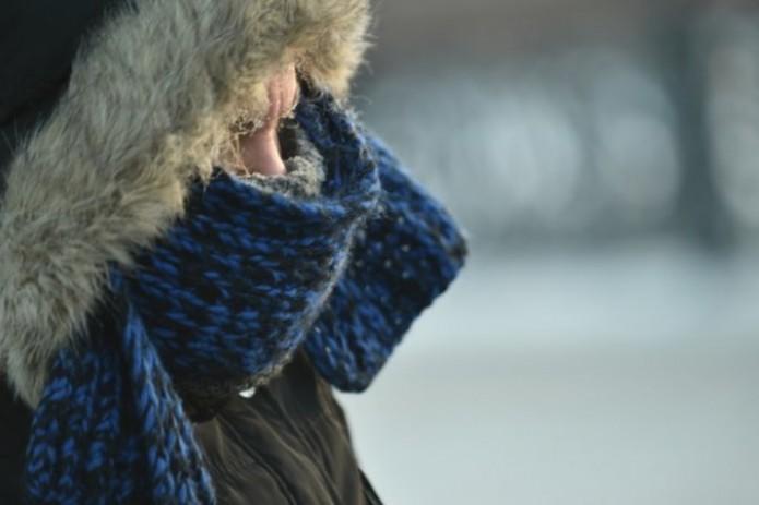 В Узбекистане похолодает до 15 градусов мороза в конце недели
