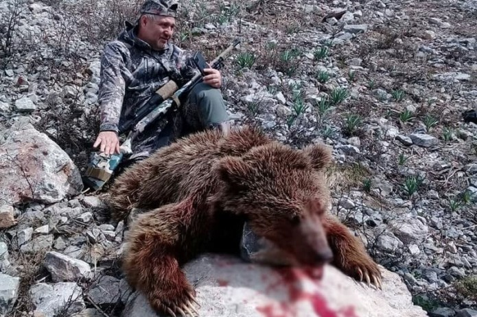 Гражданин России застрелил в Узбекистане бурого Тянь-Шаньского медведя, который занесен в Красную книгу