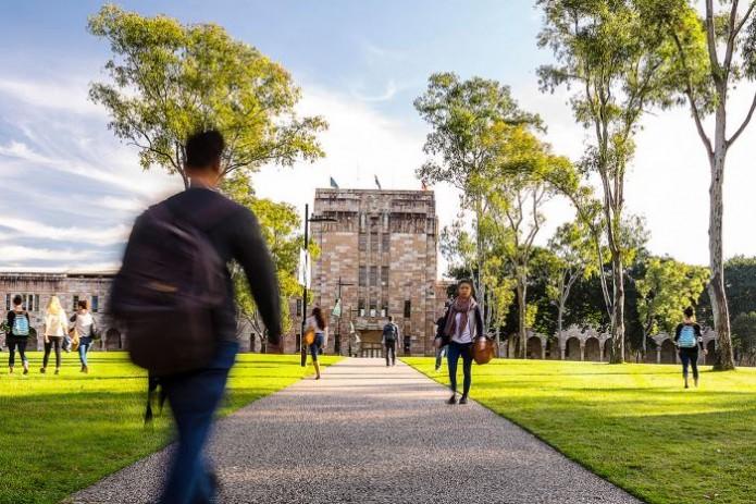 В Андижане будет создан новый иностранный университет