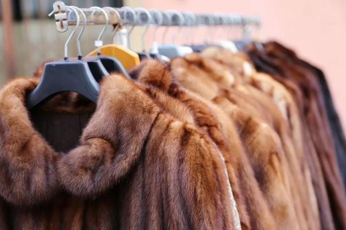 Израиль стала первой в мире страной, где запретили продажу меховых изделий