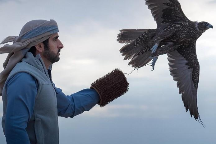 Дубайский принц устроил соколиную охоту в Навои