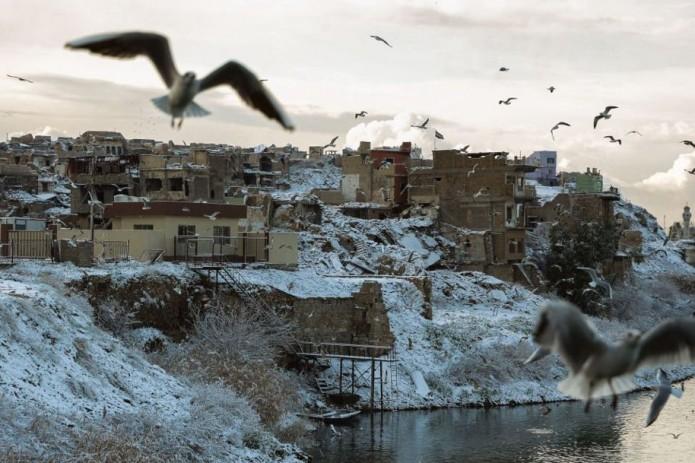 Багдад засыпало снегом второй раз за 100 лет