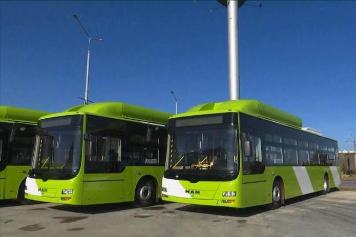 «Тошахартрансхизмат» получил 30 низкопольных автобусов MAN