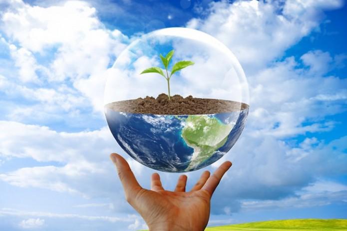 5 июня - Всемирный день окружающей среды
