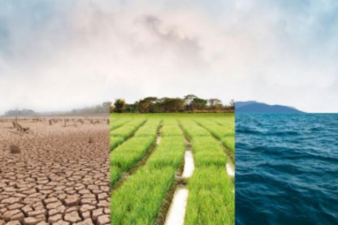 Концентрация парниковых газов в 2020 достигла рекордного уровня, - ООН
