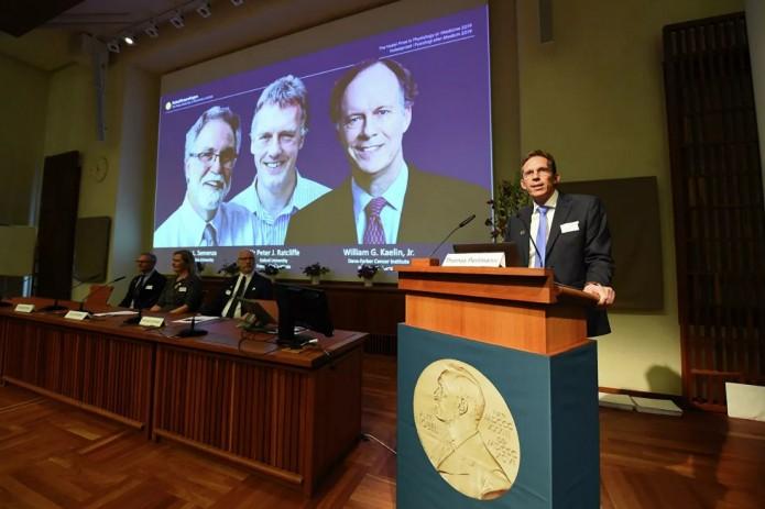 Названы лауреаты Нобелевской премии по физиологии и медицине