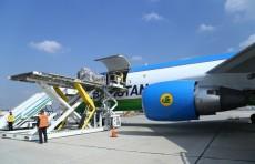 Планируется ввести режим «открытого неба» в аэропортах Андижана и Навои