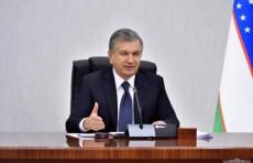 В Узбекистане внедрят механизм уведомительной регистрации самозанятых