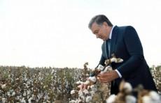 Шавкат Мирзиёев: Человек, усердно трудящийся на земле, должен быть богатым