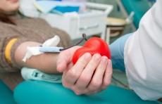 НИИ гематологии и переливания крови просит ташкентцев о помощи