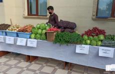 В Ташкенте организуются ярмарки по торговле продуктами первой необходимости