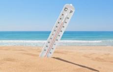 Узгидромет: Температура воздуха поднимется до 33 градусов тепла