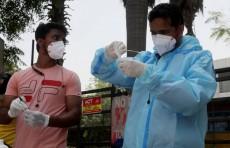 ВОЗ признала особую опасность индийского штамма коронавируса