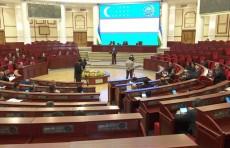 Депутаты раскритиковали проект закона о бюджетно-налоговой политике