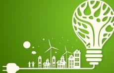В Узбекистане разработана стратегия по переходу на «зеленую» экономику