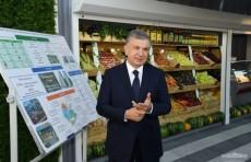 В Ташкенте будет образован новый микрорайон «Янги хаёт» (Новая жизнь)