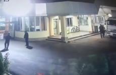 Мужчина облил собаку кипятком. Суд применил максимальное наказание