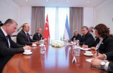 Президент принял министра иностранных дел Турции Мевлюта Чавушоглу