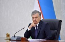 В Узбекистане отменят стикеры и разрешат использование личного автотранспорта