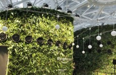 Amazon открыл новый офис в Сиэтле напоминающий тропический лес