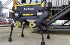 Швейцарские ученые представили нового робота