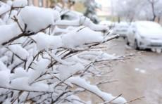 В Узбекистане на этой неделе ожидается снижение температуры до -22 градусов