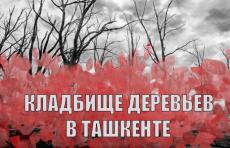 Спецрепортаж UZREPORT TV: Как (не) ухаживают за новыми деревьями