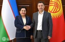 Танзила Нарбаева встретилась с президентом Кыргызстана Садыром Жапаровым