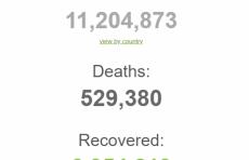 В мире количество инфицированных коронавирусом перевалило за 11 миллионов