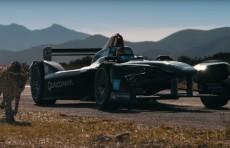 Гепард против машины, кто быстрее?