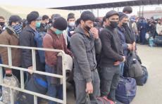Узбекистанцев планируют еженедельно вывозить из России