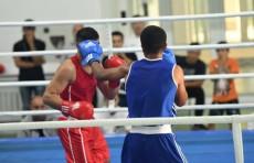 В четырёх областях появятся школы высшего спортивного мастерства по боксу