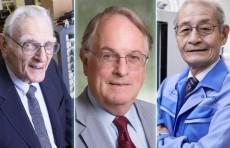 Нобелевскую премию по химии присудили за разработку литий-ионных аккумуляторов