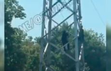 В Ташкенте женщина пыталась спрыгнуть со стойки линии электропередачи